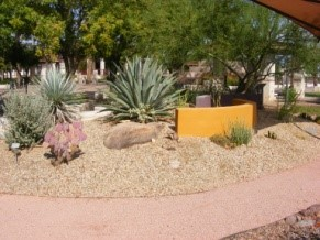 Visit The Desert Fusion Garden Enjoy Low Water Use Landscaping Located In Front Of City Hall S East Wing On Peoria Munil Campus