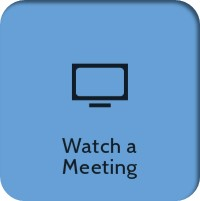 Watch a Meeting