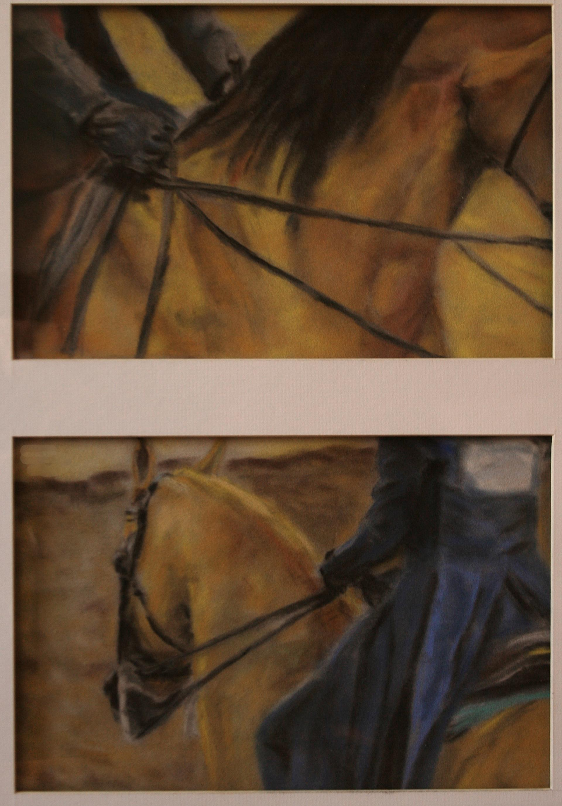 14b Pat Varner - Art Of Dressage - Pastel