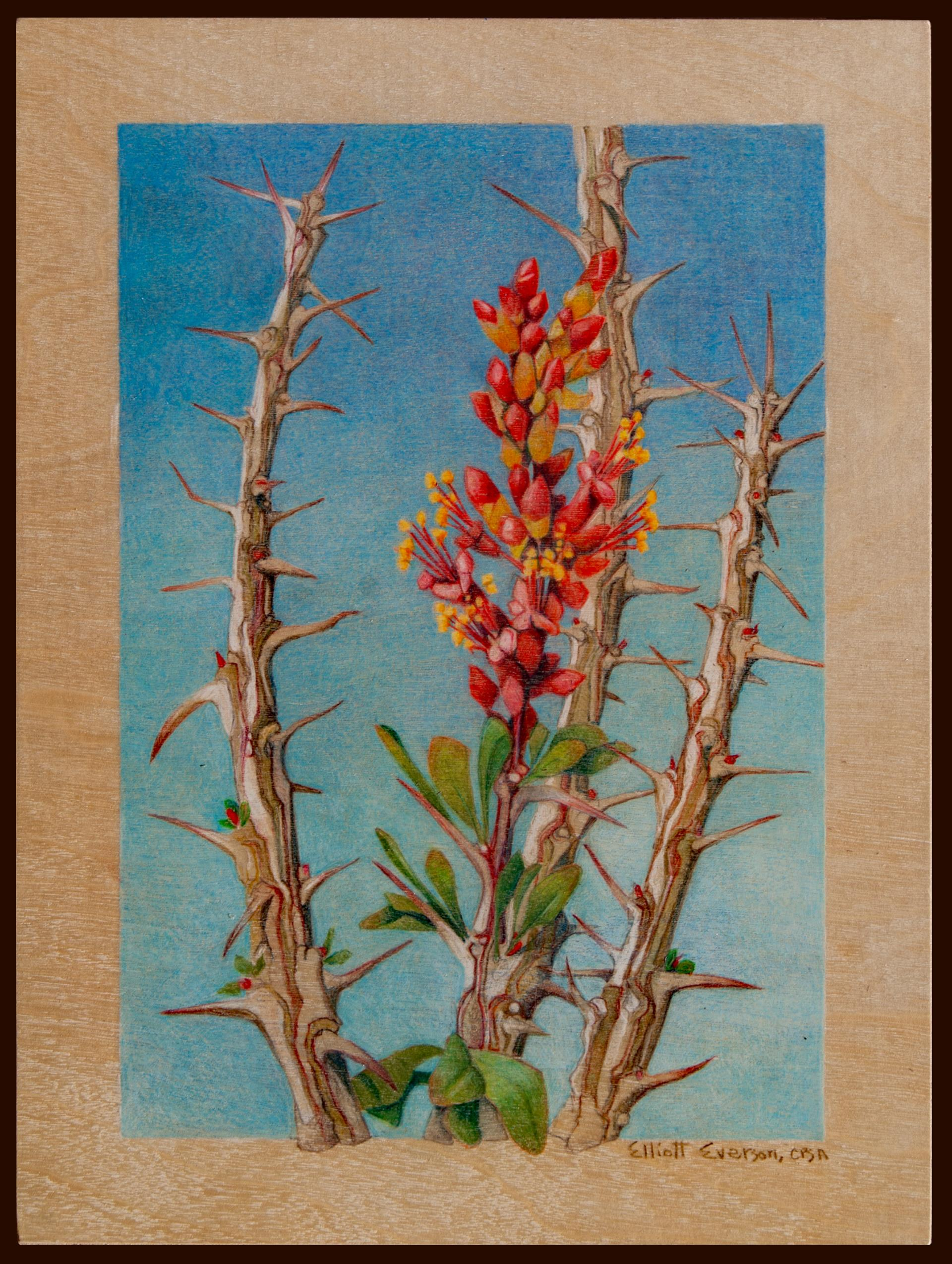 35b Elliott Everson - Ocotillo Trio - color pencil on wood - 2nd Place