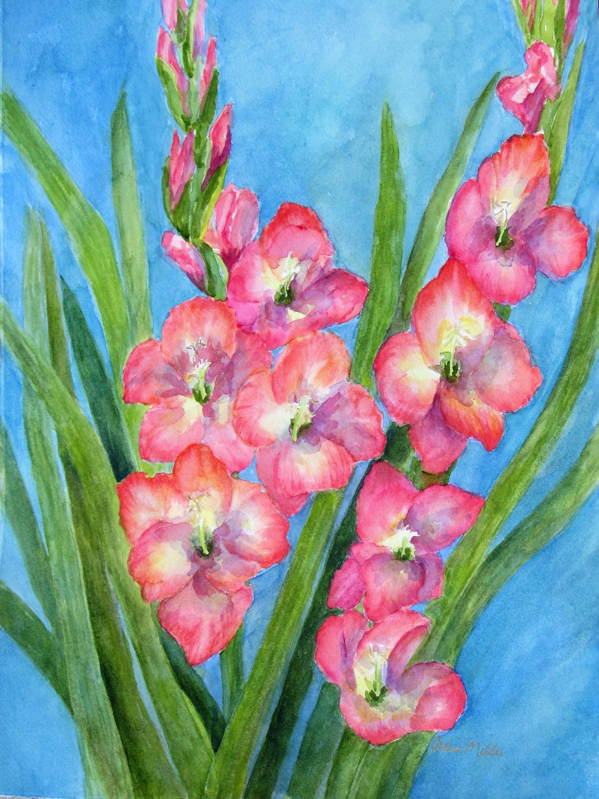 41b Arlene Miller - Gladioli - watercolor