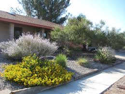 Get a rebate for converting your home to low water usage landscaping